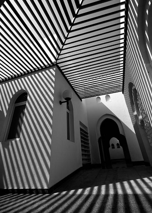 Roger-Oates_Monochrome-shadow