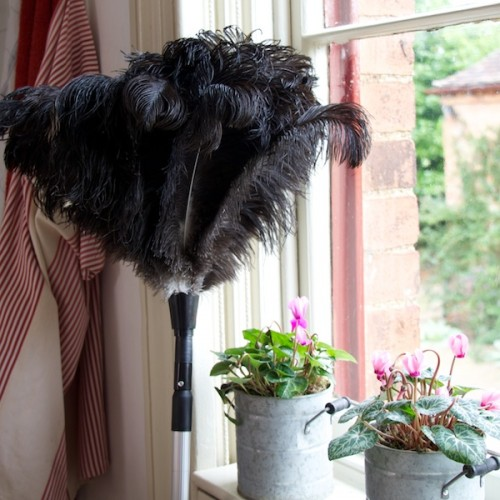 RO Feather duster